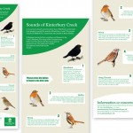 Birds-Audio-Sign-Design