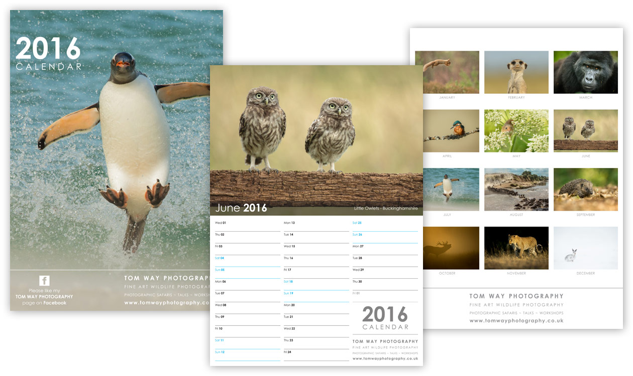 Calendar Design Uk : Wildlife photography calendar modred design