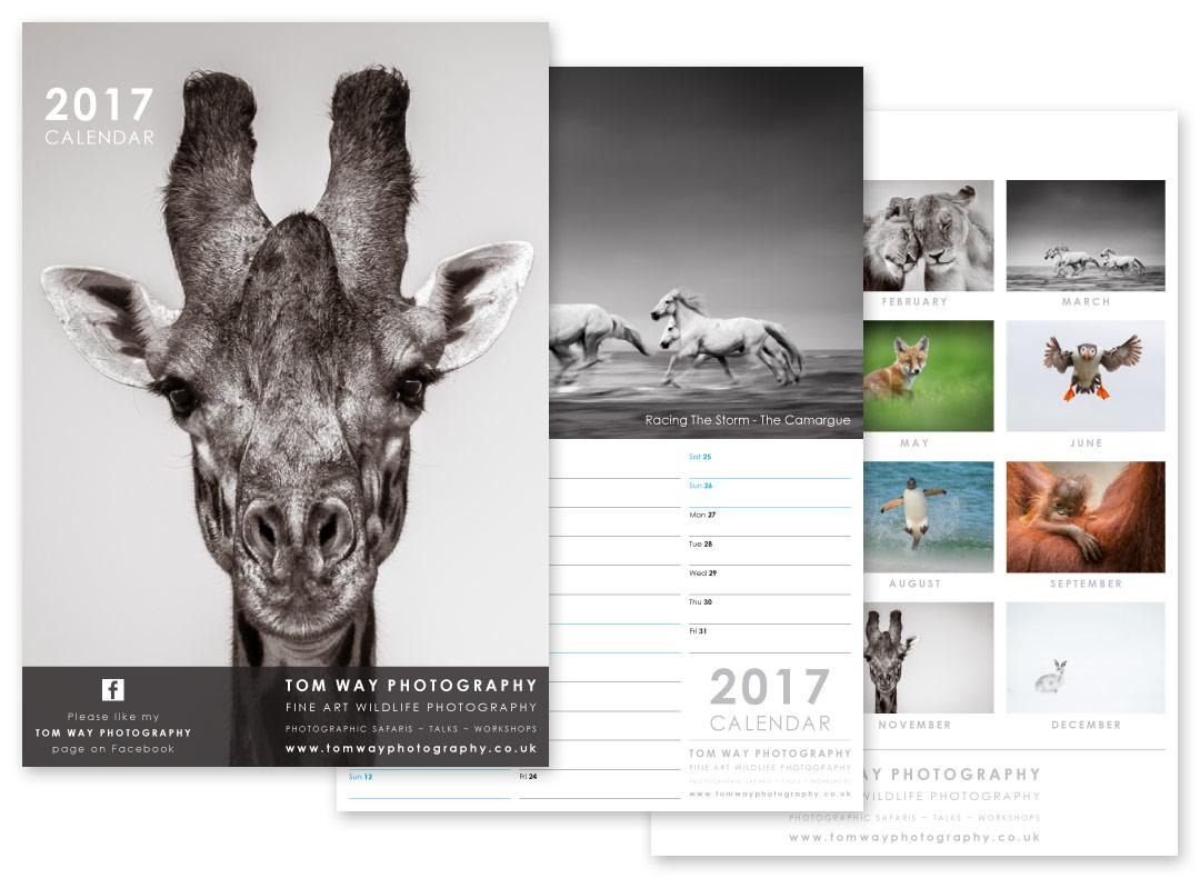 Photography Calendar 2017 : Calendar design modred