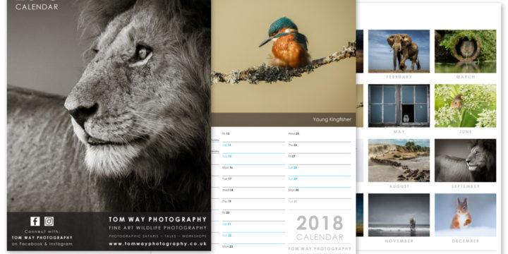 Photography Calendar Design 2018
