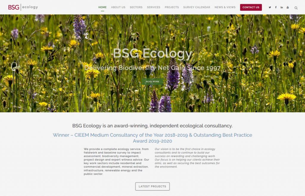 Ecology Consultancy SEO Improvements