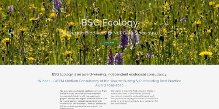 Ecology Consultancy SEO Improvements