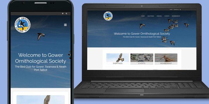 Gower Ornithology Web Design